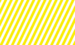 pic: (c) jofroi amaral